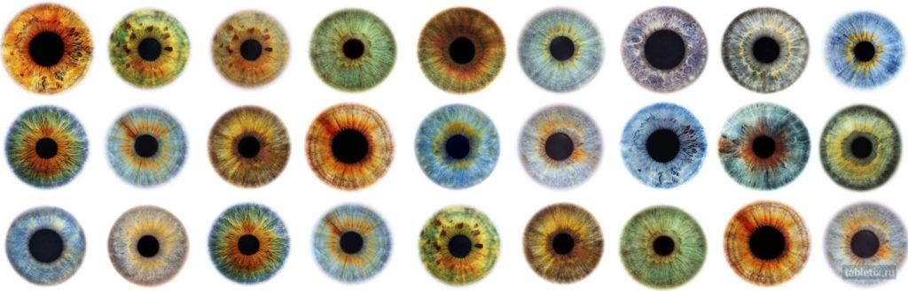 Разнообразие цветов радужной оболочки человеческого глаза