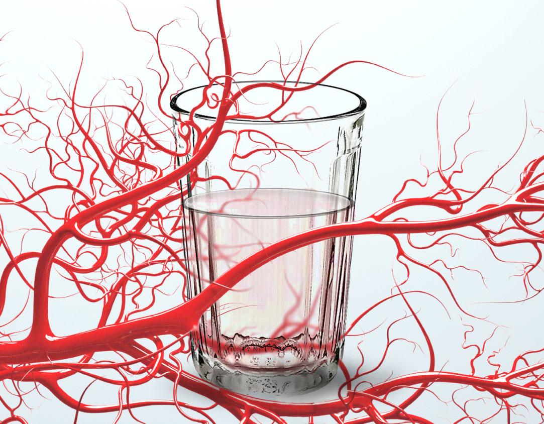 Холестерин и алкоголь