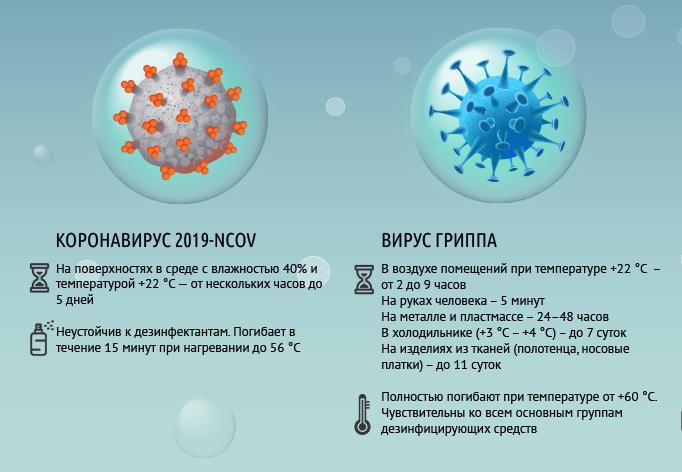 Срок жизни коронавируса и вируса гриппа вне организма