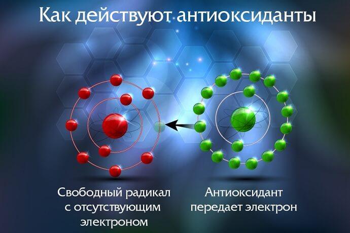 Как действуют антиоксиданты