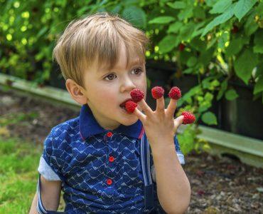 Витамины для детского организма